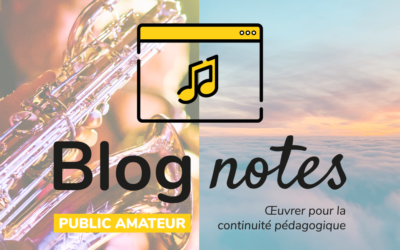 Blog notes — Public amateur | Fiches #1