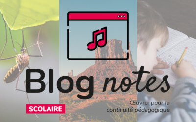 Blog notes — Scolaire | Fiches #7