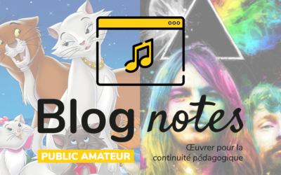 Blog notes — Public amateur | Fiches #11